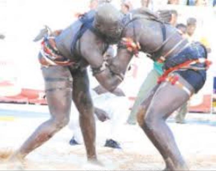"""7ème édition du Tournoi de lutte africaine de la CEDEAO : 4 """"Lions"""" en finale"""