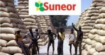 Crise à la SUNEOR: les travailleurs passent de 900 à 337 permanents