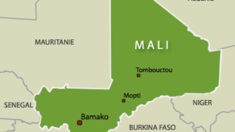 Mali: arrestation de douze jihadistes présumés dans le centre