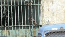 Drame de Kouroussa : des sanctions prises