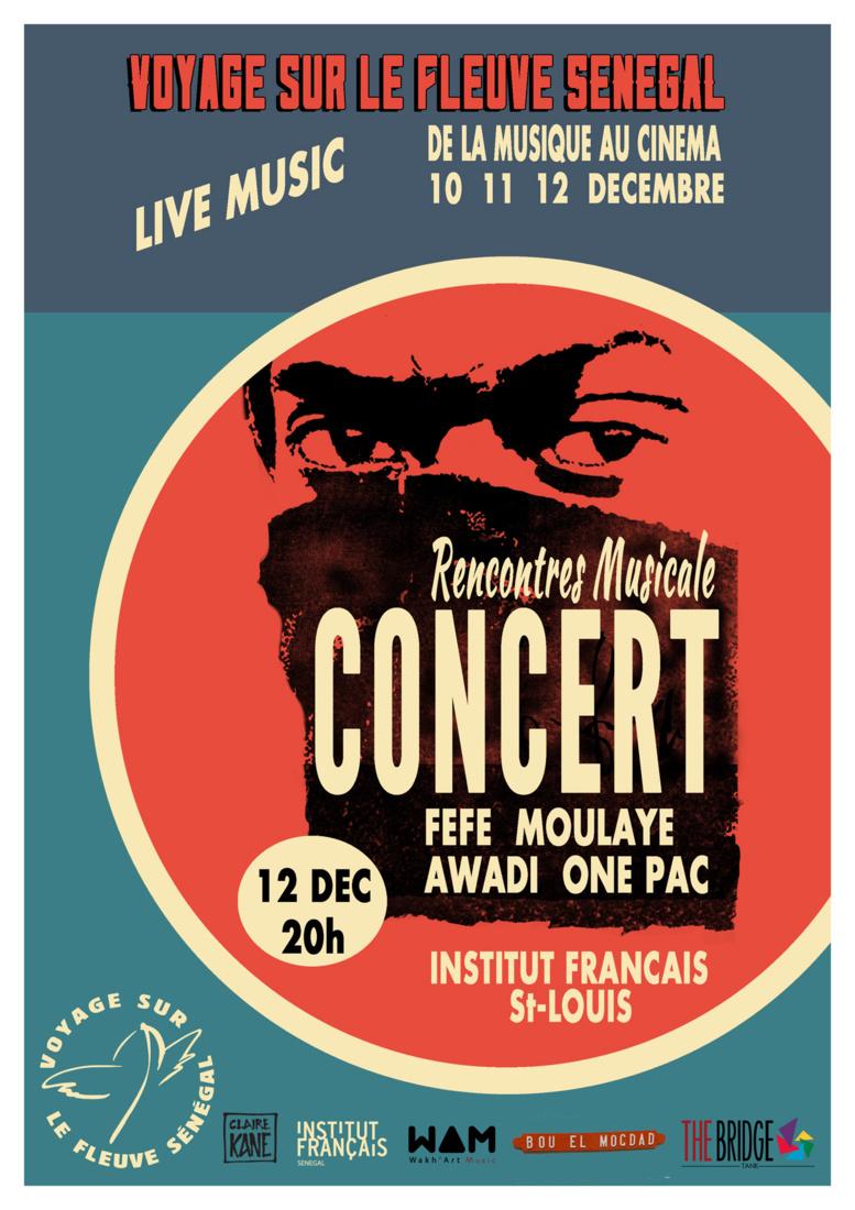 3 Jours de Festival à Saint-Louis: voyage sur le Fleuve Sénégal Festival - Cinéma, Mode, Musique