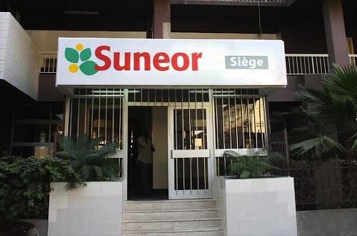 Mauvaise campagne de commercialisation de l'arachide : La Suneor au bord du péril.