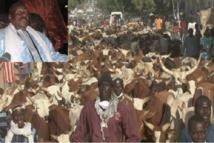 Touba-Adra Fall, responsable de la boucherie de Cheikh Bethio séjourne à la prison de Diourbel