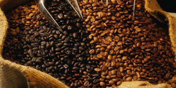 En 2016, la consommation de café va exploser en Afrique