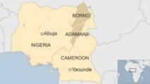 Cameroun : deux morts dans un attentat