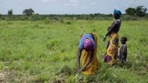 Burkina: Les femmes exigent le quota