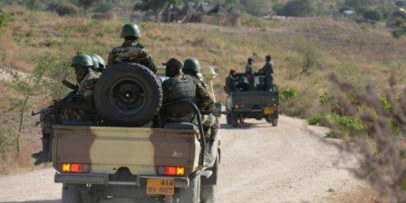Boko Haram : l'armée camerounaise intervient en force au nord du Nigeria