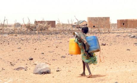 Sécheresse en Afrique: près d'un million d'enfants souffrent de grave malnutrition