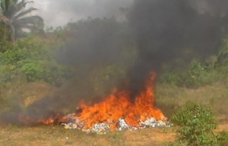 Centre-ouest ivoirien : Plus de 3 tonnes de produits prohibés saisis en 2015 incinérés à Gagnoa