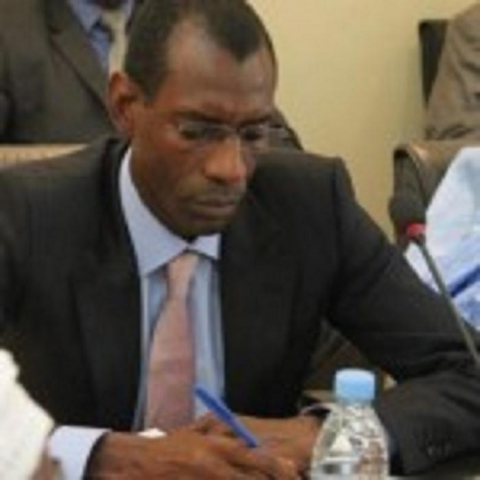 Référendum du 20 mars: 600 bureaux ouverts à l'étranger, la Libye et la Centrafrique extraites
