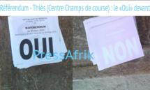 Référendum - Thiès (Centre Champs de course) : le «Oui» devant