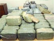Ziguinchor : 480 kg de chanvre indien et 70 boulettes de cocaïne saisis par la Douane
