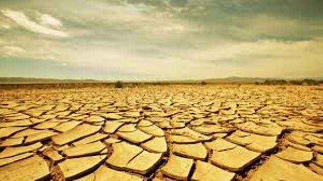 Somalie : l'ONU lance un appel aux fonds pour éviter la famine