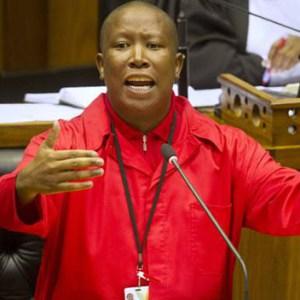 Afrique du Sud: Julius Malema n'exclut pas la violence pour renverser Zuma