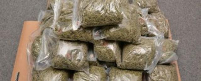 Trafic de cannabis à Kolda, deux armes à feu saisis et un sexagénaire arrêté