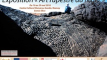 Art rupestre: quand le Niger était verdoyant