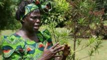 Les Africaines et la lutte contre le réchauffement climatique