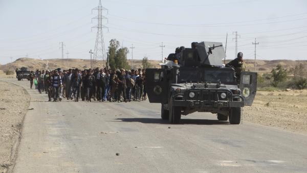 Irak : les forces gouvernementales annoncent être entrées dans Fallouja, bastion du groupe Etat islamique