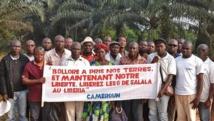 Mobilisation en France et en Afrique contre la Socfin