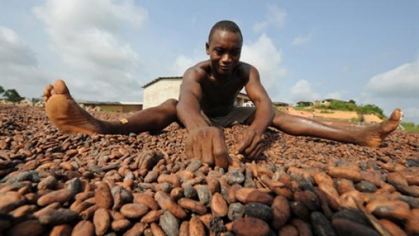 Malgré des matières premières moins chères, l'économie africaine reste dynamique