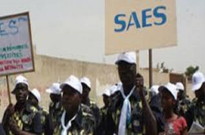 12ème congrès ordinaire du Saes : Pr Malick Fall succède à Seydi Ababacar Ndiaye