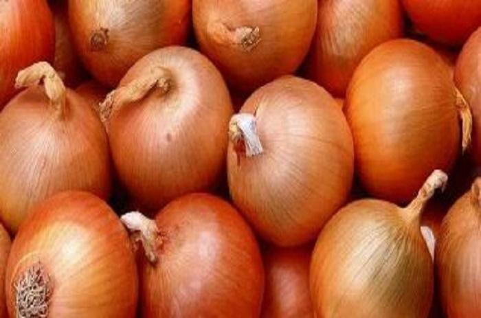 Filière oignon: les importations reprennent ce lundi
