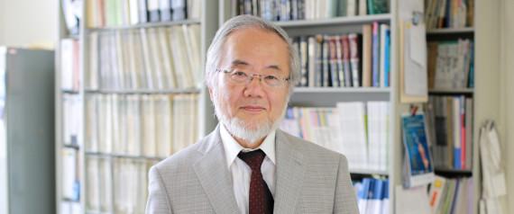 """Le prix Nobel de médecine 2016 décerné à Yoshinori Ohsumi pour ses travaux sur """"l'autophagie"""""""