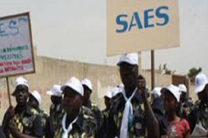 La section SAES-FASEG appelle à un arrêt de travail à compter du lundi 24 octobre 2016
