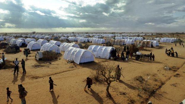 Réfugiés somaliens : Amnesty accuse Nairobi