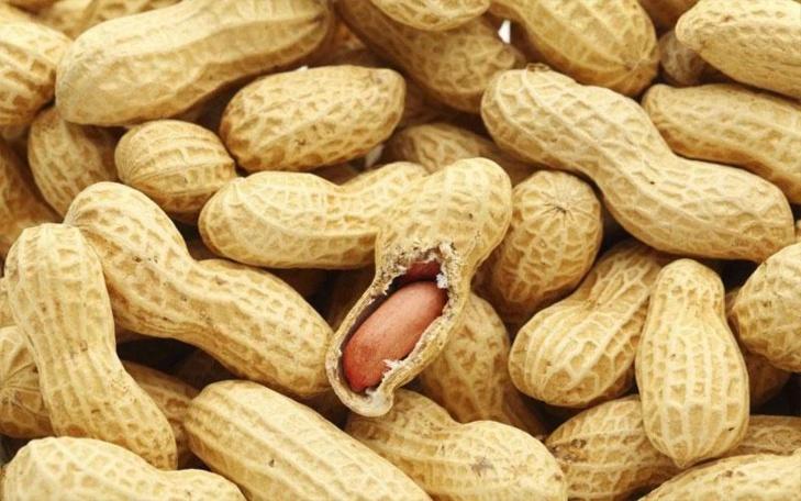 Campagne de commercialisation de l'arachide : la date et les prix fixés aujourd'hui