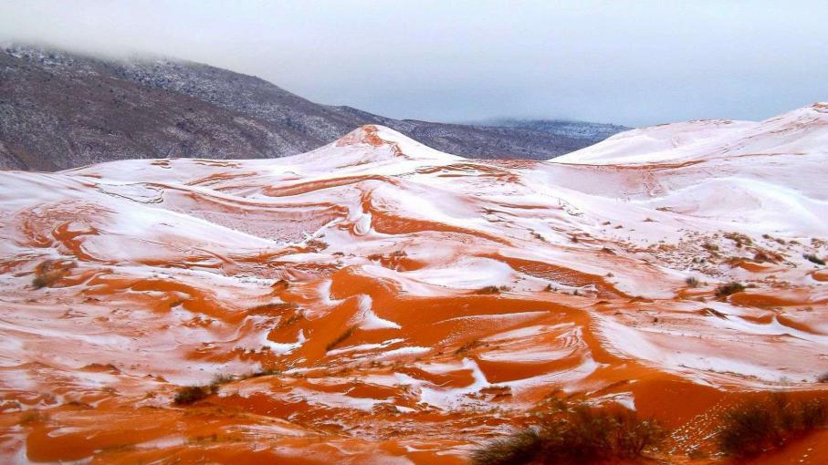 EN IMAGES. Les dunes du Sahara sous la neige pour la première fois depuis 37 ans