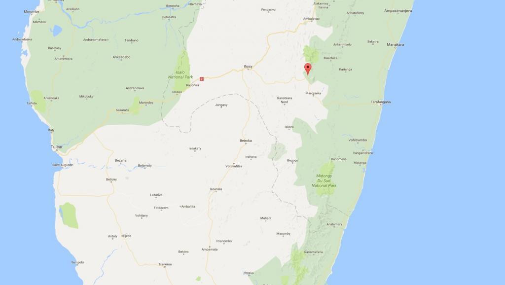 Madagascar: affrontements violents entre voleurs de zébus et gendarmes