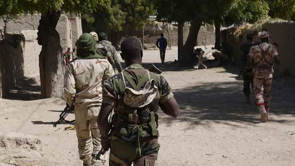 Des miliciens nigériens de Boko Haram se sont rendus aux autorités, selon Niamey
