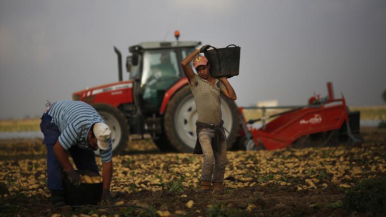 Maroc : si l'UE ne respecte pas l'accord agricole, Rabat menace d'une «reprise des flux migratoires»