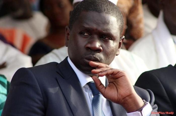 Me Oumar Youm panique: «Si Macky Sall perdait les législatives, ...»