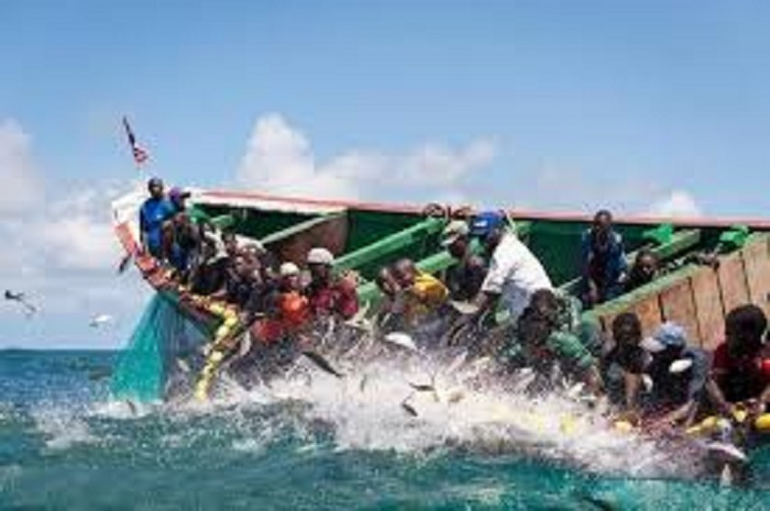 4 300 pirogues sénégalaises immatriculées aux noms de privés mauritaniens, (ministre)