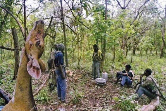 La Casamance vers une paix définitive : Le MFDC dépose les armes