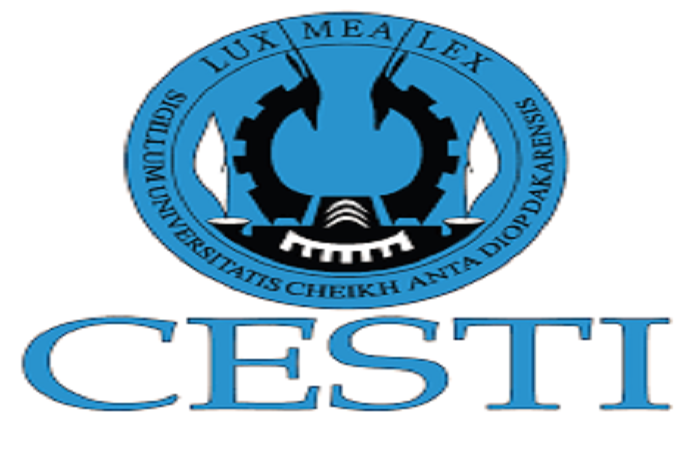 Formation-Les acteurs de 22 radios communautaires de la Casamance naturelle à l'école du CESTI