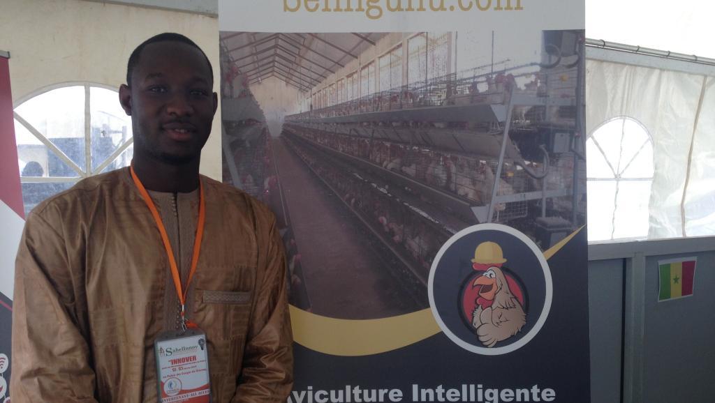 Sénégal: une start-up dynamise le secteur avicole