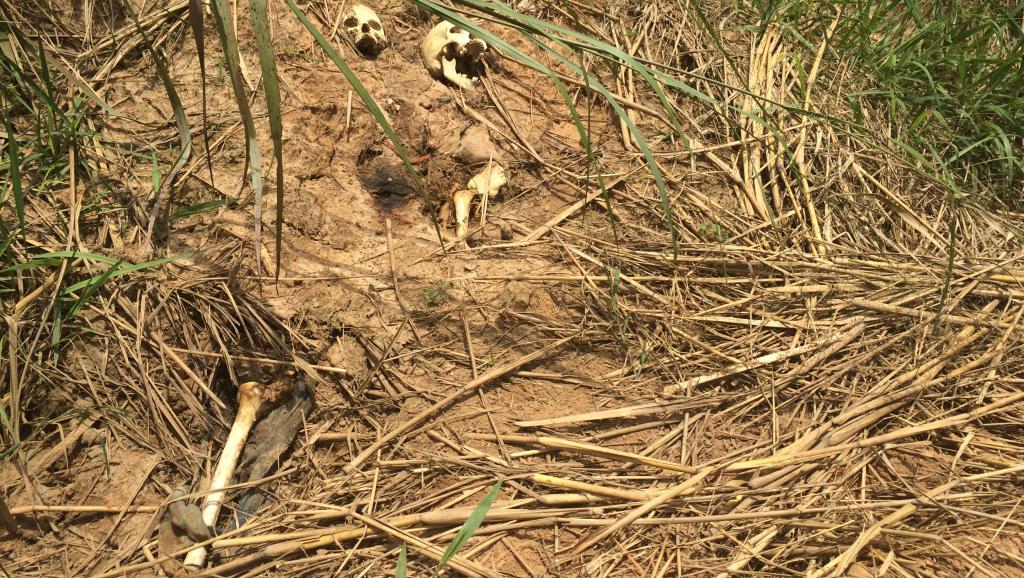 fRDC: la société civile se mobilise contre les violences au Kasaï