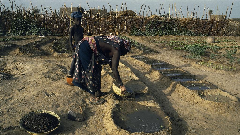 Marche des Haratines contre l'esclavage en Mauritanie: il reste du chemin