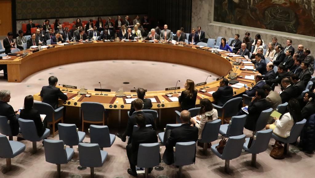 Mort des experts de l'ONU: le Conseil de sécurité met la pression sur la RDC