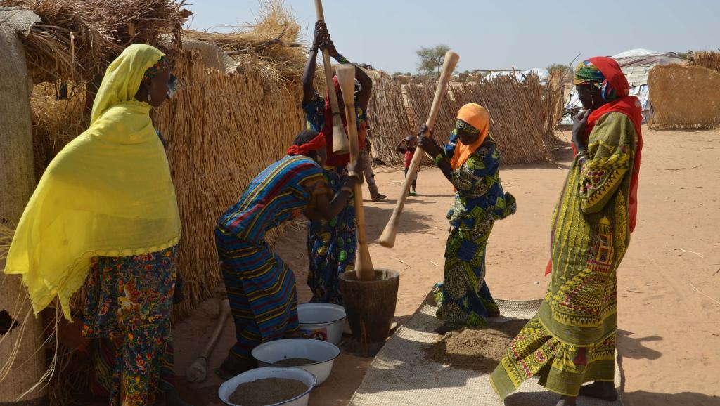 Niger: la région de Diffa toujours menacée par une épidémie d'hépatite E