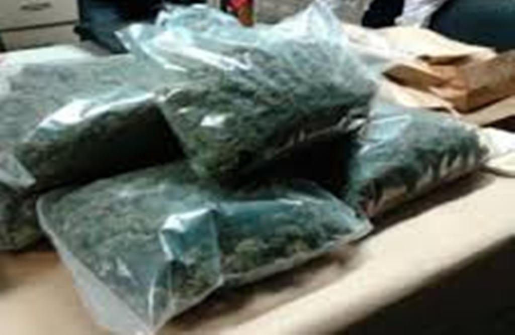 Trafique de drogue : Ibrahima Sow tombe avec 9 kg à Mbour