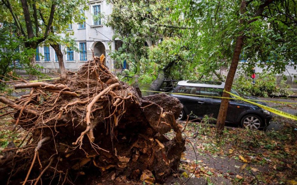 Roumanie : une tempête fait huit morts dans l'ouest du pays