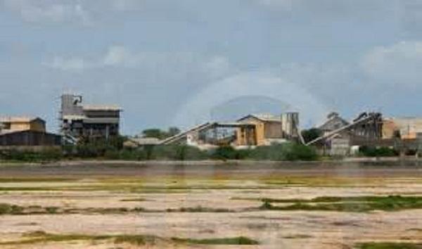«Les pertes à la Sonacos de Lindiane sont de 2 milliards FCFA en lieu et place des 400 millions» (Syndicalistes)
