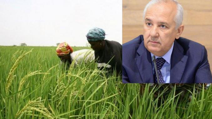 Affectation de 10 000 hectares de terres à une société marocaine: La Raddho part en guerre contre l'Etat