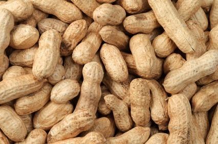 Suspension de la taxe à l'exportation sur l'arachide, (Communiqué)