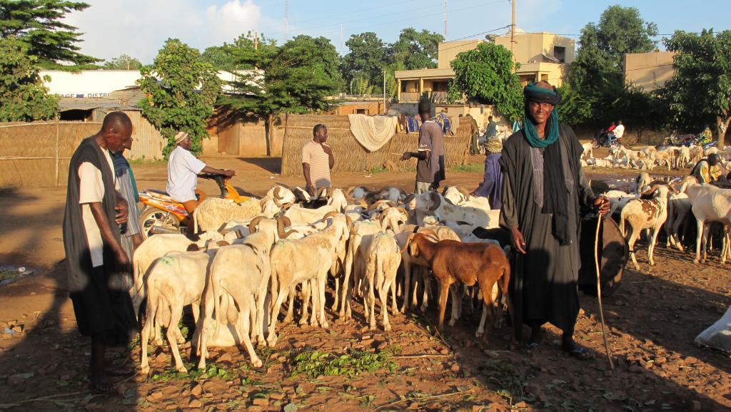 Mali: le gouvernement condamne les propos d'un maire contre les Peuls