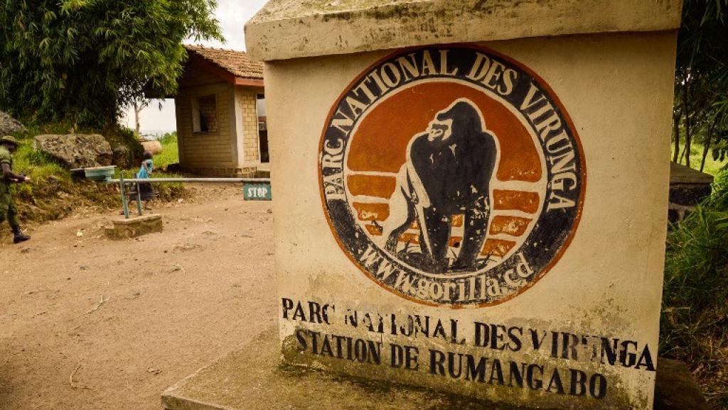RDC: libération des deux touristes britanniques enlevés dans les Virunga